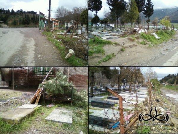 آرامش بهاری در بقاع متبرکه با چاشنی قطع درختان و کندن گل و گیاه !
