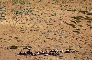 خطر بیابانی شدن در کمین گلستان/ عدم برنامه آمایش سرزمین، مهمترین مشکل در بحث مقابله با بیابان زایی